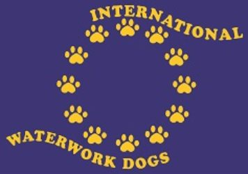 International Cup For Waterwork Dogs